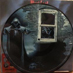 Виниловая пластинка Meat Loaf – Bat Out Of Hell II: Back Into Hell (picture)