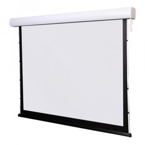 """Экран Digis DSTP-4310 (TAB-Tension Prime, формат 4:3, 300"""", 612x488, рабочая поверхность 600x450, MW)"""