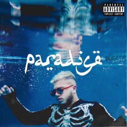 Виниловая пластинка Hamza, Paradise (Black Vinyl)