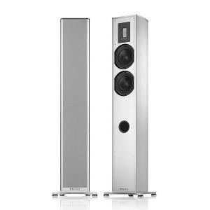 Напольная акустика Piega Premium 701