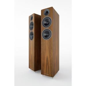 Acoustic Energy AE309 (2018) Walnut wood veneer