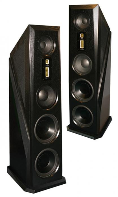 Напольная акустика Legacy Audio Aeris black oak